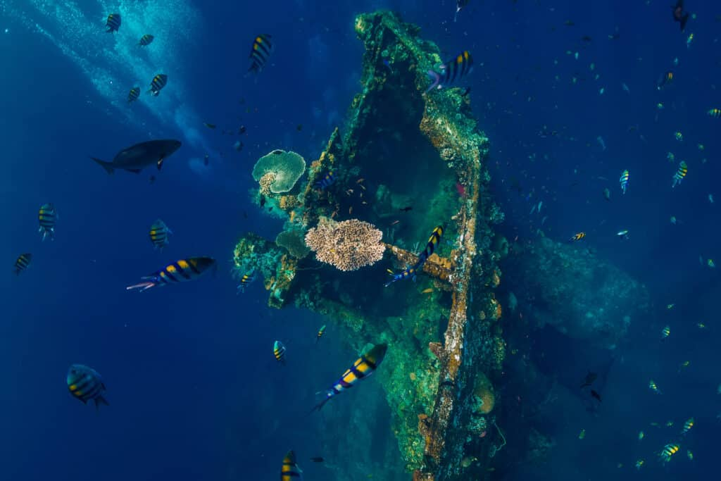 Uss Liberty Skibsvrag Under Vand Ved Tulamben Bali